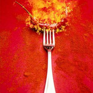indian-restaurant-fork